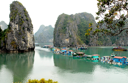 Khu Làng chài Vung Viêng nhìn từ trên cao